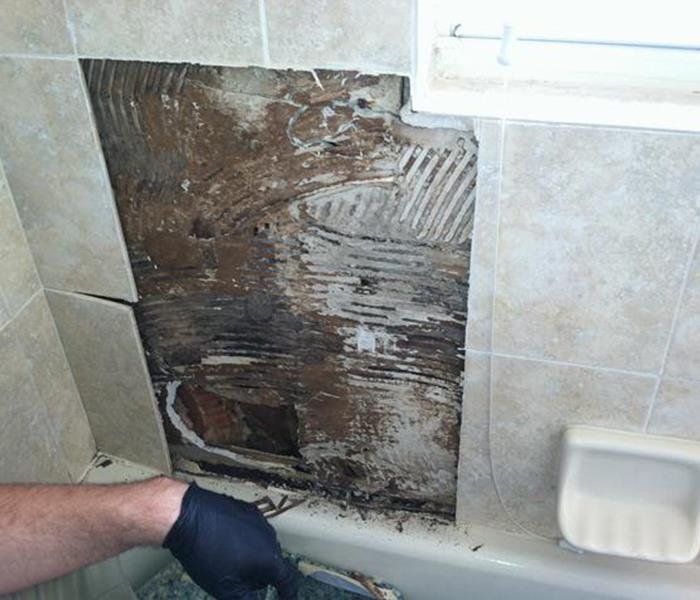 Mold Damage in Nashville Bathroom