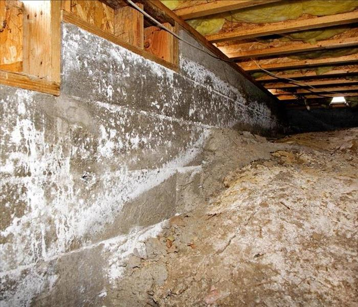 Water Damage When Water Removal Is Needed for Your Nashville Home