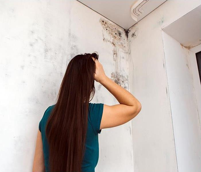 Mold Remediation Remodeling Can Lead To The Discovery Of Mold Damage In Your Nashville Home