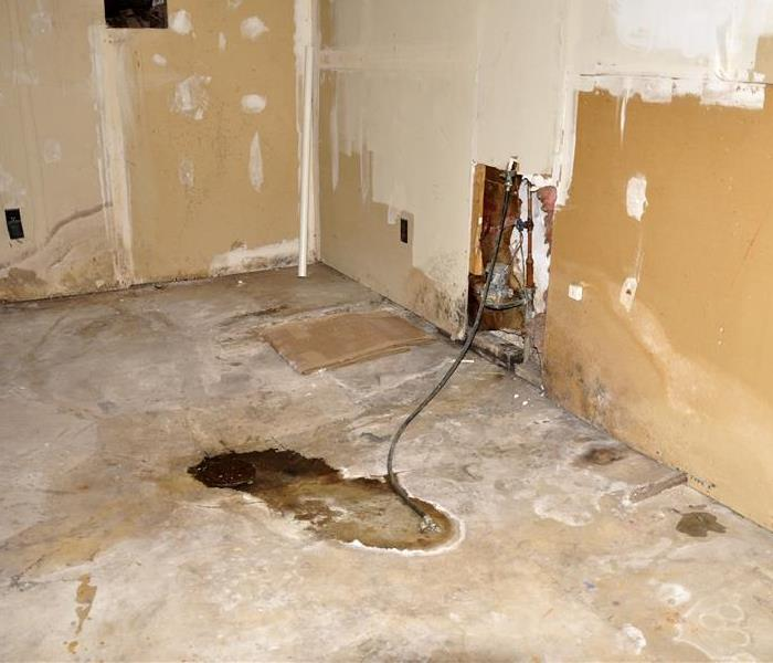 Mold Remediation Water Damage Can Quickly Escalate To Mold